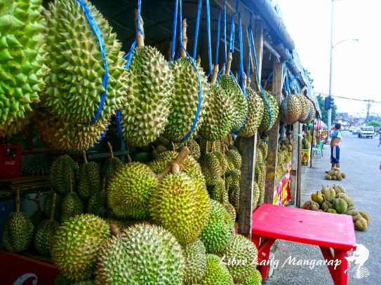 Image result for durian davao MAGSAYSAY